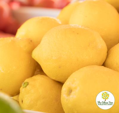 Cincinnati Lemons