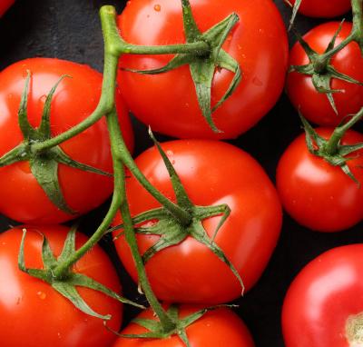 Field Grown Tomatoes