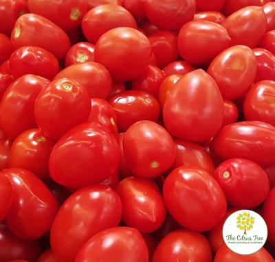 Tomatoes Roma