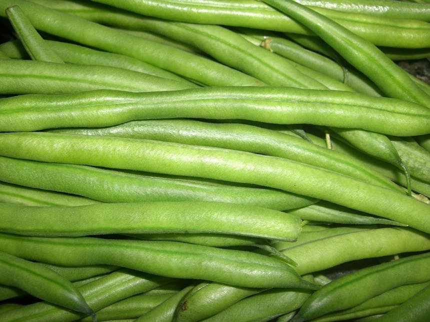 Farm Fresh Green Beans